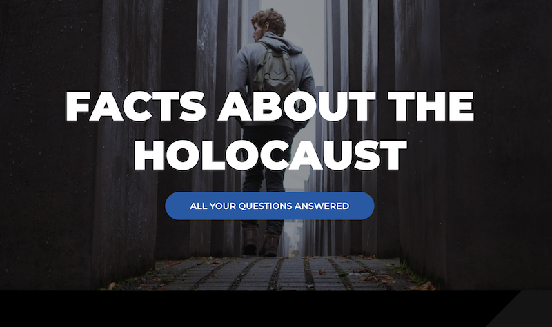 Preview of About Holocaust website